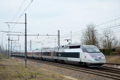 "TGV Réseau 4523 ""Iris by TGV"" (SylvainBouard) Tags: train railways tgv sncf"
