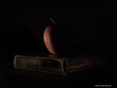 Soul Food (scottnj) Tags: apple bible lowkey soulfood sidelit sidelight 365project 71366 tookapic scottnj cy365 scottodonnellphotography reddit365 redditphotoproject