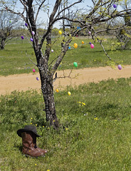 Shortest Cowboy in Texas 2 (Largeguy1) Tags: blue sky canon easter landscape cowboy texas eggs approved shortest 5dsr