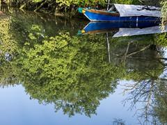 sottosopra (conteluigi66) Tags: foglie barca albero riflessi riflesso immagine piatto luigiconte