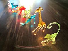 Color Brigade (Pfish44) Tags: light shadow color animals colorful bokeh plastic 52weeksofpix2016