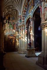 Prtico del Paraso / Portico of Paradise (Andrs Surez Garca) Tags: espaa architecture religious spain arquitectura cathedral catedral ourense religioso nikond90 nikkor18105mm