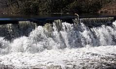 P1190787 (Rimager) Tags: water river waterfall dam fallingwater