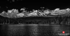The Climb (Thncher Photography) Tags: leica sky bw lake snow mountains nature monochrome clouds oregon landscape outdoors blackwhite fishing northwest scenic rangefinder pacificnorthwest fullframe fx mounthood waterscape m9 trilliumlake leicasummicronm35mmf2asph leicam9 agm9