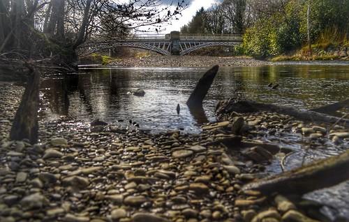The Severn at Caerhowell Bridge