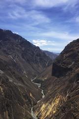 Can del Colca (Luiz Seo) Tags: peru americalatina southamerica nature trekking landscapes natureza arequipa colcacanyon paisagens sudamerica americadosul candelcolca appleiphone6