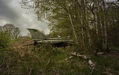 DSC_8033 (Photographe-Runner) Tags: plane lost decay avion mig urbex abandonn