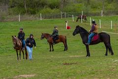 DSCF0321.jpg (Ed Traywick) Tags: horses horse leo robyn obstacles horseclinic