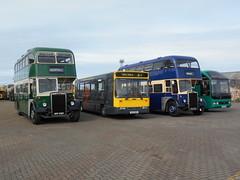 Caerphilly Urban District Council GNY 432C (32), Cardiff Bus 023, Bedwas and Machen Urban District Council PAX 466F (6) and Robin Hood Travel Ltd (Leek Staffs) RIB 8289 (welsh bus 16) Tags: 6 barry 32 robinhood 023 cardiffbus pax466f ctpg gny432c caerphillyurbandistrictcouncil rib8289 n23obo bedwasmachenurbandistrictcouncil