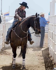 Cowgirl (_bobmcclure_) Tags: horse southwest rodeo cowgirl cavecreek
