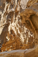 _DSC7085 (the.bryce) Tags: iran qeshmisland