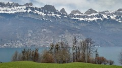 Switzerland landscape (osiakos) Tags: blue mountain lake snow green landscape switzerland hegy fa t tjkp zld mez erd svjc