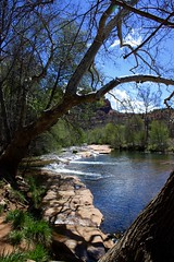 (withUibelong) Tags: trees leaves spring stream sedona az redrocks brook cathedralrock redrockstatepark