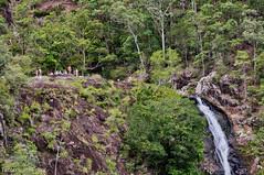 Kondalilla Falls - view to the top (Tatters ) Tags: people waterfall australia queensland sunshinecoasthinterland kondalillanationalpark