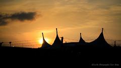 Aun tengo al Sol (para besar tu sombra) (Lex Arias / LeoAr Photography) Tags: city sky sunlight lines silhouette architecture contraluz atardecer arquitectura nikon artistic venezuela fineart ciudad cielo silueta barquisimeto lineas 2016 luzsolar nikond3100 leoarphotography lexarias iglexariasphotos