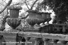 Villa Lante (Claudia Celli Simi) Tags: bw italia bn viterbo lazio parchi villalante bagnaia giardinoallitaliana cardinalgambara