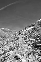 Wild Nature (Daniele Vettese) Tags: wild love pain nikon no meta valle running su monte sempre montagna piu gain libert 3100 camminare fulmini escursione
