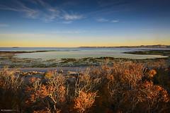 colores de otoo (Mauro Esains) Tags: patagonia costa sol atardecer mar nikon sigma playa paisaje cielo otoo gran angular aire ocaso libre vegetacin caleta nuves 10mm nikonsigma