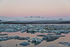 shs_n8_067754 (Stefnisson) Tags: ice berg landscape iceland belt venus glacier iceberg gletscher glaciar sland icebergs jokulsarlon breen vatnajokull jkulsrln ghiacciaio jaki girdle vatnajkull jkull jakar s gletsjer ln venuss  glacir sjaki venuses sjakar mvabyggir stefnisson mfabyggir mavabyggdir mafabyggdir