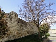Astudillo (santiagolopezpastor) Tags: espaa wall spain medieval walls espagne middleages muralla castilla palencia castillaylen murallas provinciadepalencia