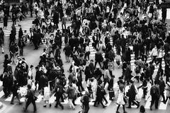 Shibuya crossing (Davide Seddio) Tags: street people japan tokyo asia crowd shibuya fareast shibuyacrossing eastasia