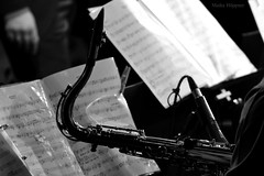Saxophon (Maike Hppner) Tags: bw music white black berlin nikon princess jazz wabe orchestra crocodile sw musik schwarz saxophon noten weis