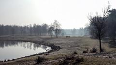 Landscape (corrieverhulst88) Tags: holland nature water brabant staatsbosbeheer boswachterijdorst