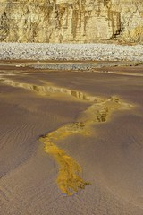 Just like honey (pauldunn52) Tags: reflection heritage beach wet wales golden evening coast sand cliffs glamorgan mawr traeth