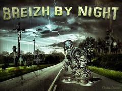 Breizh by Night (Christele D Photographie) Tags: bretagne breizh montage bzh cration brocliande illeetvilaine pllanlegrand