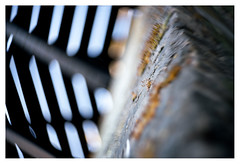 Moss on the mill (leo.roos) Tags: windmill monster mos moss lomography challenge molen krasnogorsk dyxum darosa russianlenses artlens leoroos a7rii zenitnewpetzval5819bokehcontrol aprilfoolishness2016