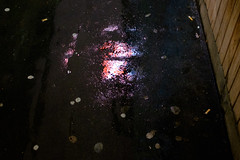 Neon Puddle (Michael Goldrei (microsketch)) Tags: street light london film wet water rain weather st night dark gum t puddle photography photo long exposure neon fuji photographer darkness time photos jan pavement soho january x sidewalk nighttime rainy chewing fujifilm after 100 16 raining drizzle 2016 xseries drizzling drissle x100t drissling