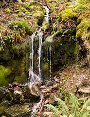 Waterfall (marcritchie) Tags: winter nature water rock outdoors scotland waterfall moss rocks loch lochlomond rowardennan visitscotland