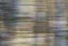 too much alcohol? (kceuppens) Tags: new blur tree nature movement bomen nikon outdoor champagne year natuur antwerp panning antwerpen berk beweging bewogen ekeren d810 bospolder nikond810 nikkor80400afs