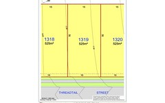 Lot 1319, 1319 Threadtail St, Chisholm NSW