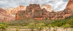 The Great White Throne (Ron Drew) Tags: park trees cliff mountain river utah nationalpark nikon pano redrocks zion zionnationalpark d800 virginriver greatwhitethrone