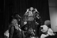 BOTTEGA DEGLI ARTISTI (brunifia) Tags: show serata freak degli artisti bottega fellifrancescolabottegadegliartistilabottegaserataoptical