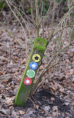 Signpost (Simon Caunt) Tags: blue red yellow moss walks post arrows signpost symbols doncaster southyorkshire waytogo ridings nikondslr nikond800 sandallbeatwood