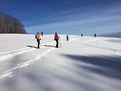 XC Skiers in Summer Pasture (Marsh-Billings-Rockefeller NHP) Tags: snow sports youth vermont skiing exercise conservation crosscountry health snowshoeing woodstock wellbeing stewardship marshbillingsrockefeller