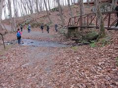 20151127,160922,Canon PowerShot S95 (orndorffr) Tags: mountain virginia hiking climbing va oldragmountain oldrag