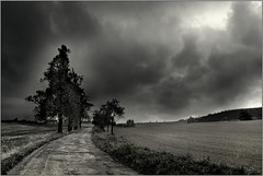 ... and then asked Alice: What's behind the mirror? (piontrhouseselski) Tags: road winter bw tree clouds