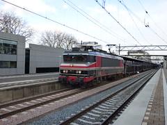 Captrain 1619 met lege autotrein te Dordrecht (treinfreak800) Tags: dordrecht lege gefco kijfhoek autotrein captrain railogix