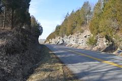 Roadcut on KY 32 east of US 25 (Kyle Hartshorn) Tags: road trees outcrop unitedstates kentucky limestone northamerica geology cedars stratigraphy roadcut ordovician paleozoic cincinnatian scottcounty sadieville laurentia katian upperordovician lateordovician mohawkian pointpleasantformation