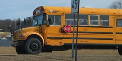 First Student #208013 (ThoseGuys119) Tags: ny ic kingston international schoolbus ce firststudentinc