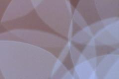 Abstract (zinnia2012) Tags: macro paleblue softbrown