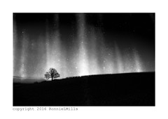 Into the Mystic (RonnieLMills) Tags: road county ireland light bw tree texture landscape mono countryside nikon angle wide down mysterious lone agriculture ie northern tamron textured newtownards 1024 autofocus speckles d90 comber innamoramento magicunicornverybest unicarvel ballyrainey