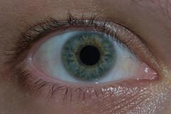 Human eye (Rafael Martos Martins) Tags: blue macro verde green eye azul closeup nikon bright 55300mm d3100