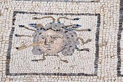 Medusa Mosaic (simonevanbergen) Tags: tree architecture garden spring spain ruins roman mosaic seville structure italica svb romanemperor simonevanbergen