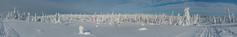 Snowy spruce forest panorama - Riisitunturi (talaakso) Tags: winter panorama snow suomi finland finnland lapland lumi talvi spruce snö lappi snowcoveredtrees winterlandscape landskap gren skitrack spruceforest latu piceaabies posio kuusi tykkylumi winterforest skidspår kuusikko finnishforest riisitunturi talvimaisema winterpanorama snowload terolaakso riisitunturinationalpark upplega crownsnowload riisitunturinkansallispuisto talaakso snowywinterlandscape