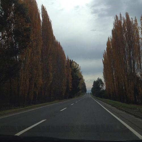 Otoño #otoño