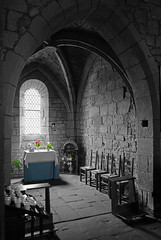 The light on the flowers (Frederic DIDIER) Tags: leica old light blackandwhite bw france church medieval eglise correze vieux limousin collonges collongeslarouge qtype116